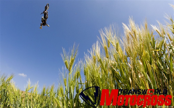 FMX motocross stunt fancy wallpaper Views:8238