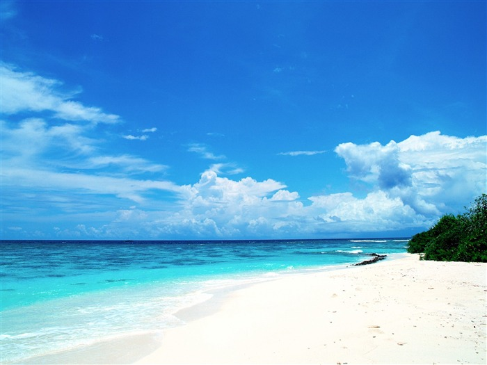 Blue honeymoon paradise - Maldives Wallpaper Views:71583