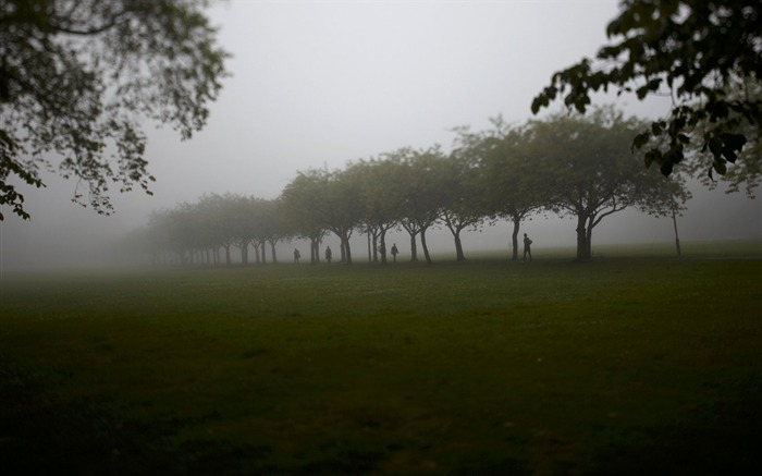 Meadows Park in thick fog scotland Views:8692 Date:7/20/2011 6:01:25 PM