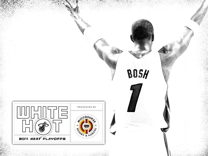 New White Hot-Bosh wallpaper 01 Views:6119 Date:7/21/2011 5:58:17 AM