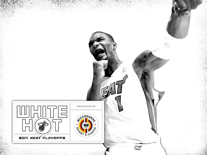 New White Hot-Bosh wallpaper 02 Views:6358 Date:7/21/2011 5:58:42 AM