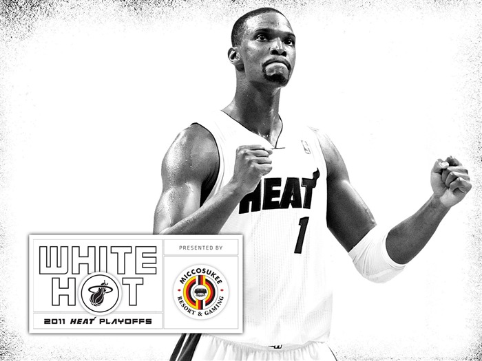 New White Hot-Bosh wallpaper Views:7580 Date:7/21/2011 5:57:58 AM