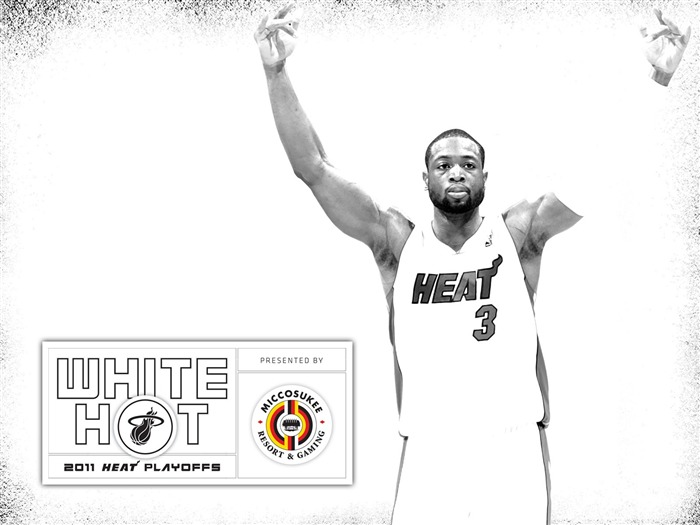 New White Hot-Wade Wallpaper Views:14436 Date:7/21/2011 6:01:36 AM