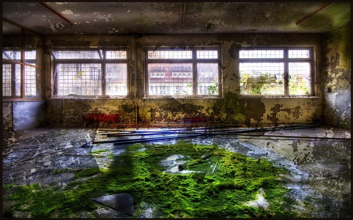 New life in abandoned hospital - Beauty Of Urban Decay Views:4492