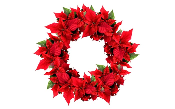 Picture- Christmas Wreath- Christmas Poinsettia Wreath Views:37642