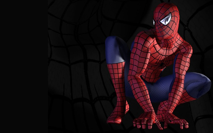 Spider Man-The movie Game Wallpaper Views:24155 Date:7/18/2011 4:47:07 PM