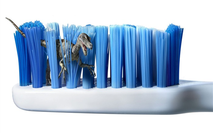 Toothbrush jungle-pictures of foreign Creative Advertising Views:5628
