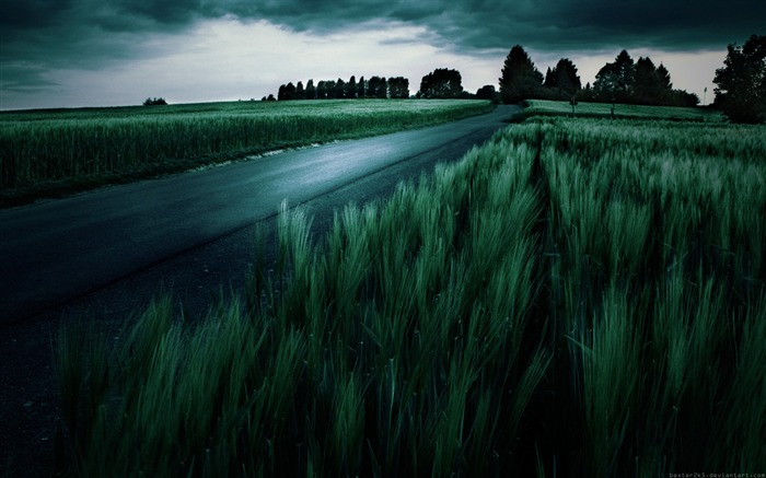 Widescreen Landscape wallpaper dark lines 07 Views:9213 Date:7/5/2011 1:50:44 PM