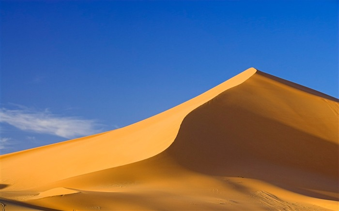 golden dunes-the worlds nature photography Views:6861