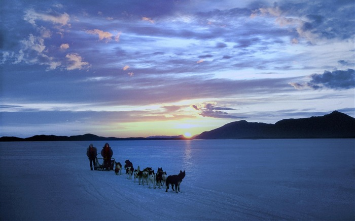 Alaska dog sledding wallpaper Views:15461 Date:8/31/2011 4:50:33 AM