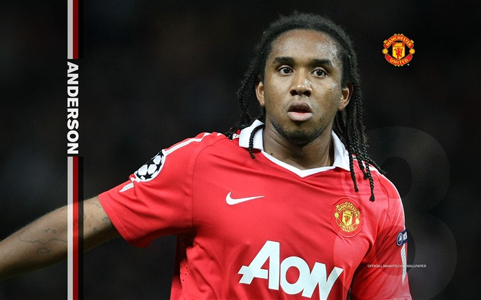 Anderson wallpaper Views:7041