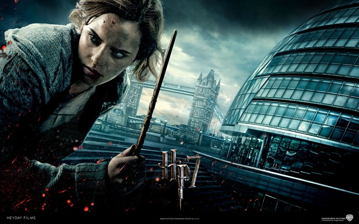 Harry Potter and the Deathly Hallows HD movie wallpaper 03 Views:8327 Date:8/9/2011 10:32:08 AM