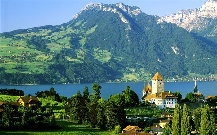 Switzerland-History will hereby castle wallpaper Views:20908 Date:8/31/2011 5:15:03 AM