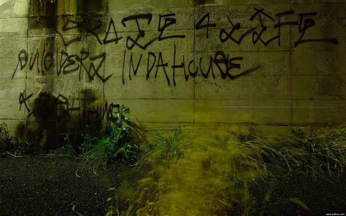 Text graffiti wallpaper Views:8161