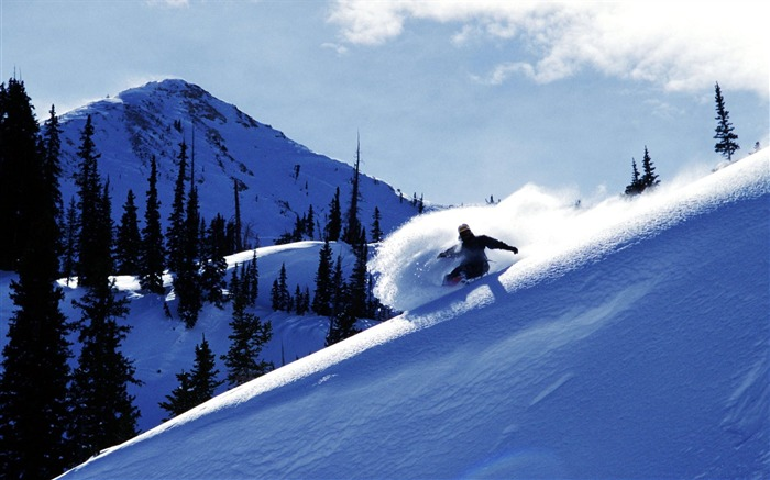 Utah-Brandon Skiing wallpaper Views:18648 Date:8/31/2011 5:13:30 AM