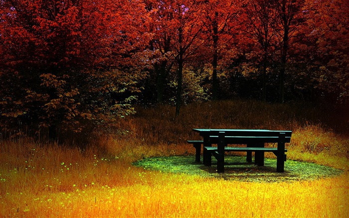 Autumn in the rest of the tables and chairs- Autumn Landscape wallpaper Views:16578