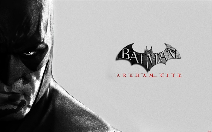 Batman Arkham City game wallpaper 10 Views:5692