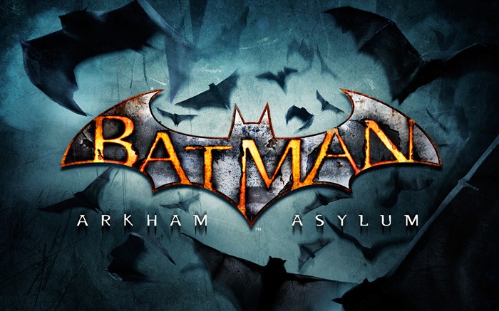 Batman Arkham City game wallpaper 17 Views:3432