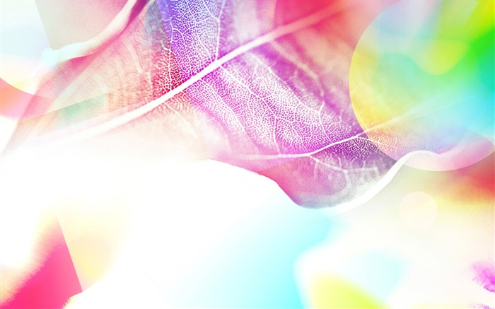 Colorful leaves under the sun-abstract design wallpaper background glare 02 Views:8002