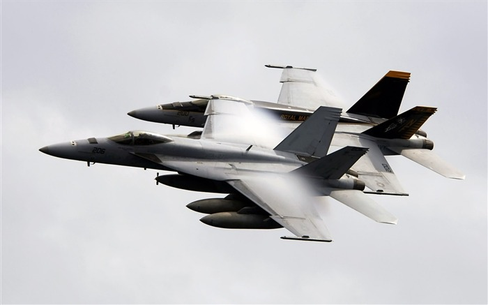 FA 18E Super Hornet- military aircraft - HD Wallpaper Views:9334