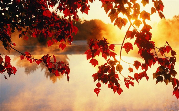 Autumn pleasant - Autumn Landscape wallpaper Views:25895