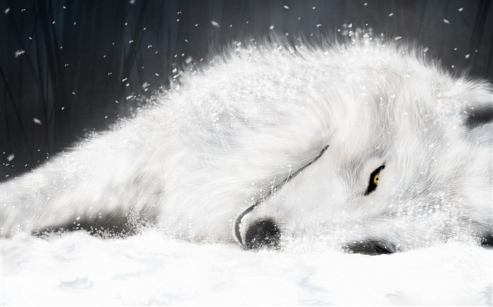Sleep in the snow and ice on the white fox-Animal World Series Wallpaper Views:55565