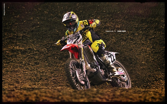 AMA Supercross fourth stop Auckland-Chad Reed Wallpaper Views:7938
