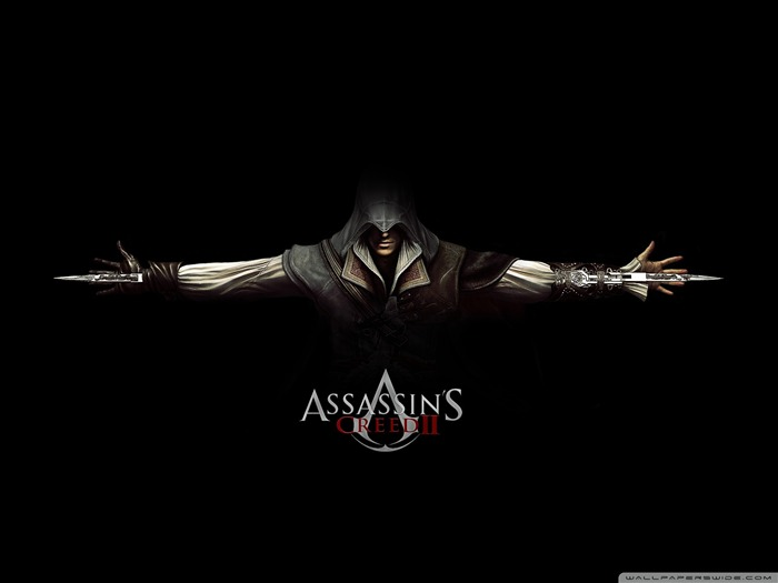 Assassin Creed Brotherhood Game Wallpaper 04 Views:43434