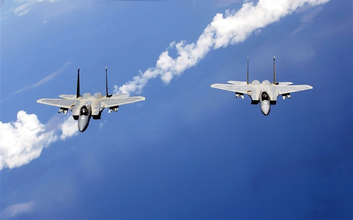 F 15 Eagles from the Air National Guard-Years of peace-military aircraft Views:4542