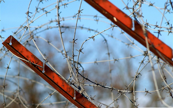 barbed wire fence-Military Desktop Wallpaper second series Views:5869 Date:11/4/2011 7:21:09 AM