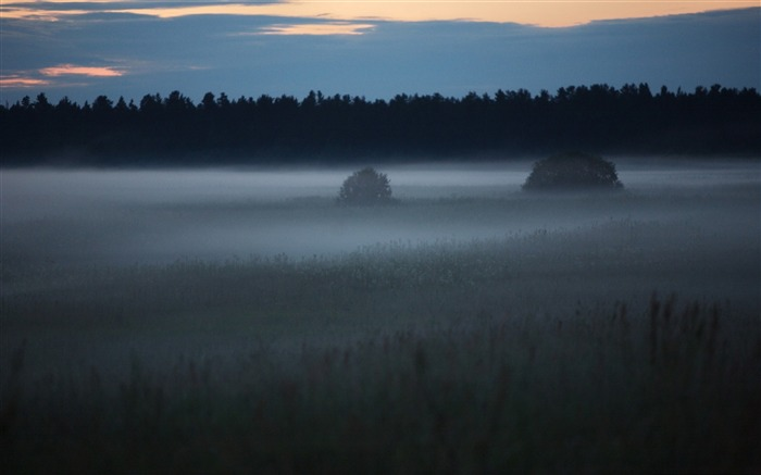 early morning fog-Beautiful natural scenery wallpaper Views:6786 Date:11/11/2011 7:06:24 AM