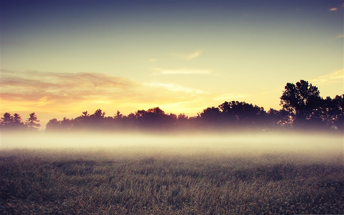 morning mist-Beautiful natural scenery wallpaper Views:12510 Date:11/11/2011 7:13:17 AM