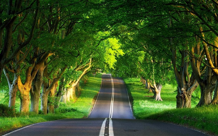 Beautiful Natural Images road summer Beautiful natural