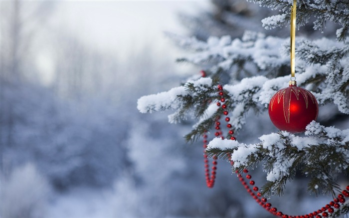 Christmas in the woods wallpaper view