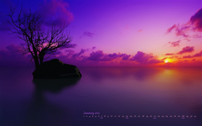 Purple Sky-January 2012 calendar desktop themes wallpaper Views:16965 Date:12/31/2011 12:01:55 AM