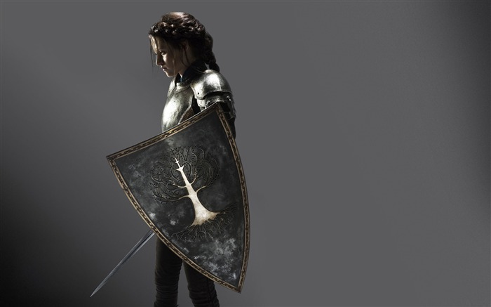 Snow White and the Huntsman Movie HD Desktop Wallpaper 01 Views:11166