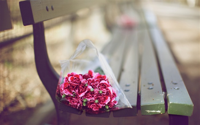 carnations bouquet on a bench-love theme desktop picture Views:7239