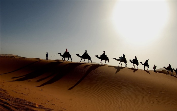 desert caravan-Amazing desert scenery Desktop Wallpapers Views:10213