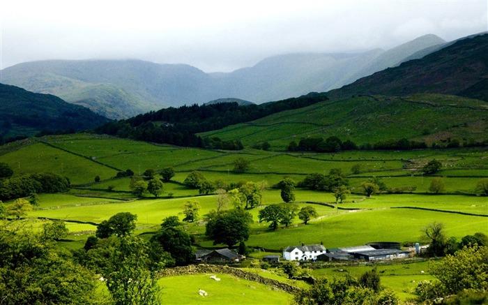 mountain spring-Beautiful natural scenery desktop ...