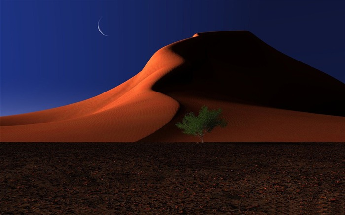 night in the desert-Amazing desert scenery Desktop Wallpapers Views:14666