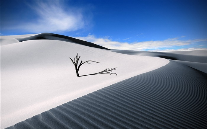 white desert-Amazing desert scenery Desktop Wallpapers Views:9861