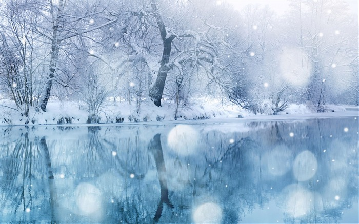 Like the romantic snow-the cold winter landscape Desktop Views:23799
