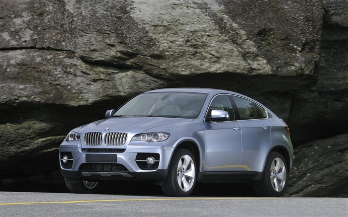 BMW X6 SUV off-road sports car series wallpaper 07 Views:8747 Date:1/4/2012 2:41:29 AM