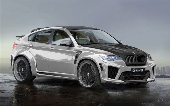 BMW X6 SUV off-road sports car series wallpaper 08 Views:12221 Date:1/4/2012 2:41:43 AM