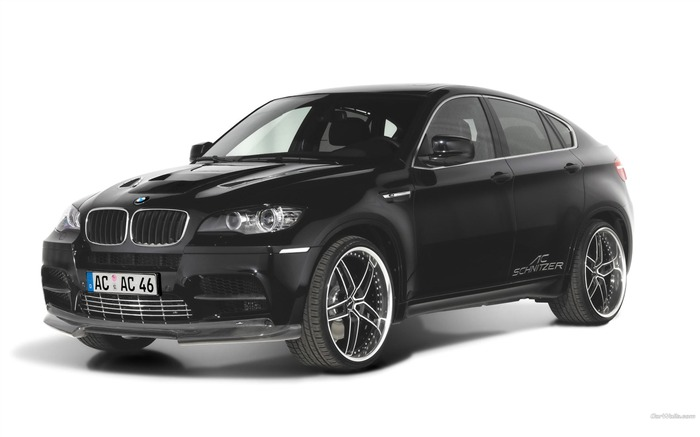 BMW X6 SUV off-road sports car series wallpaper 21 Views:4559 Date:1/4/2012 2:45:01 AM