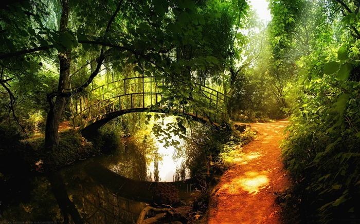 arched bridge reflections-forest landscape desktop wallpaper Views:8752
