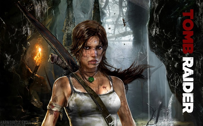 Tomb Raider 9 Game HD wallpaper Views:15899