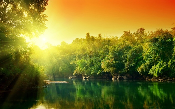 lush green forest river at sunrise-Beautiful river landscape photography Views:32527