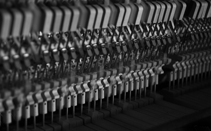 piano hammers 01-music theme wallpaper Views:6801