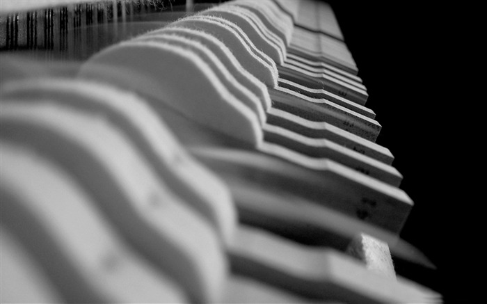 piano hammers close up-music theme wallpaper Views:8609
